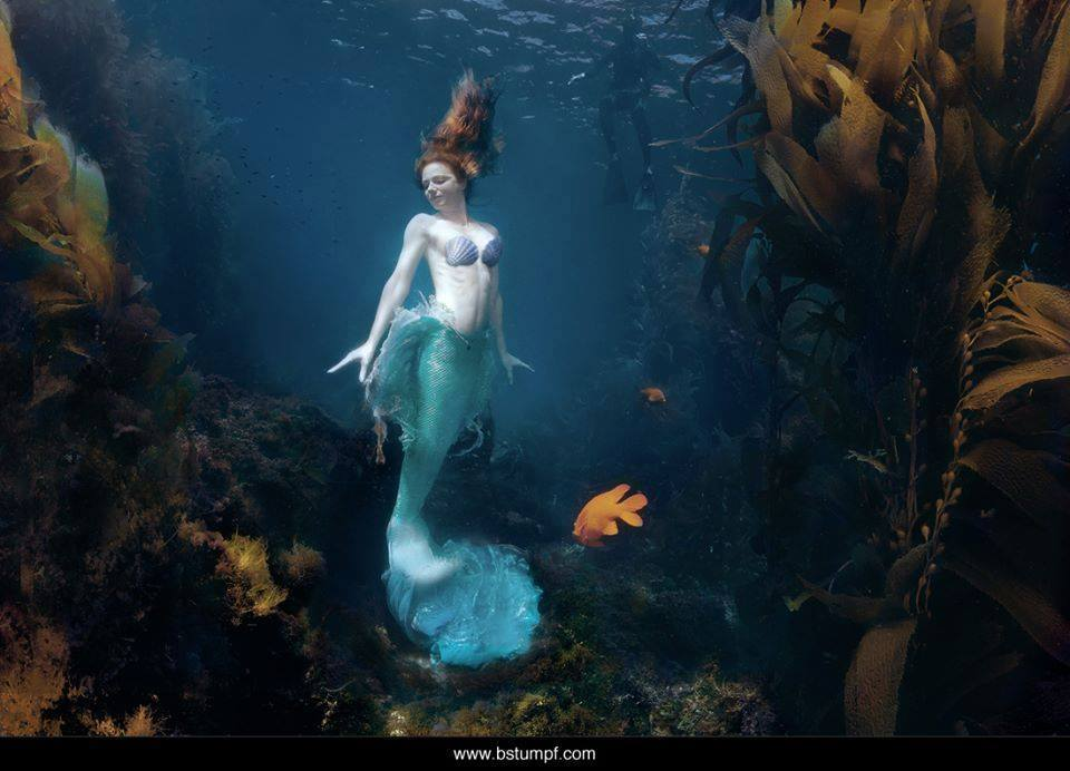 The Little Mermaid Cosplay Collection