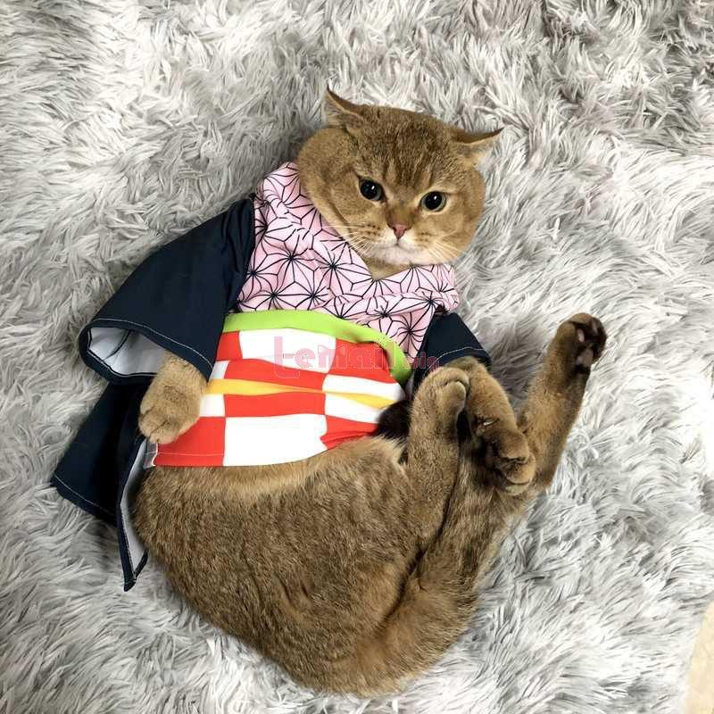 Demon Slayer Derivatives 5 Style Cat Costume Cosplay Costume