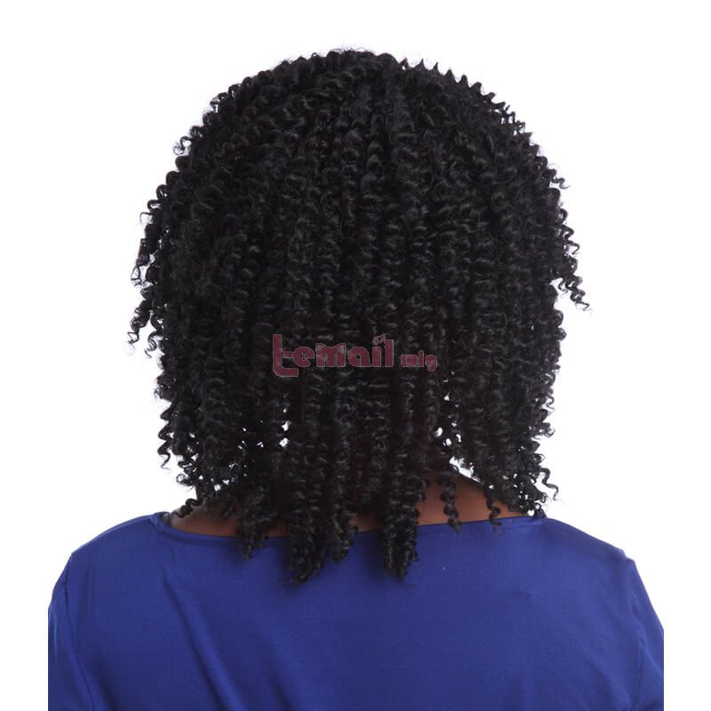 14Inch Women Natural Black Curly Wave Lace Front Wigs